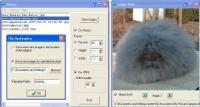 Screenshot programu Resize 2.7