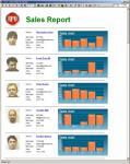 Screenshot programu Rpv Business Reports 5.3.5