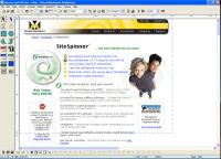 Screenshot programu SiteSpinner 2.91g
