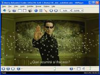 Screenshot programu SMPlayer 0.6.9 Linux