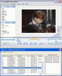 Screenshot programu SolveigMM Video Splitter 3.6.1301.9