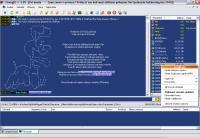 Screenshot programu StrongDC++ 2.42
