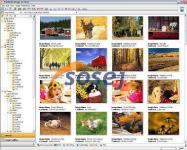 Screenshot programu StudioLine PhotoBasic 3.70.62