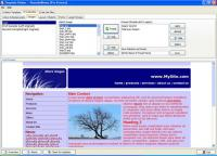 Screenshot programu Template Shaker 3.6