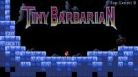 Screenshot programu Tiny Barbarian