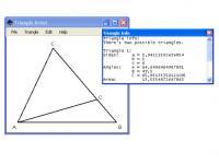 Screenshot programu Triangle Artist 1.0
