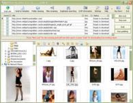Screenshot programu WebPictureGrabber 3.4.1