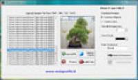 Screenshot programu WG Screensaver Creator 1.0