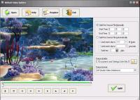 Screenshot programu WiliSoft Video Splitter 2.1.1