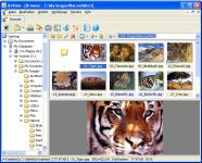 Screenshot programu XnView 1.99.1 Standard
