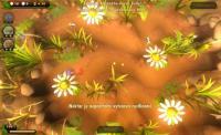 Screenshot programu Ze života hmyzu 1.5