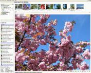 Screenshot programu cPicture 3.3