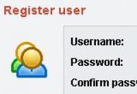 Screenshot programu micro LoginSystem